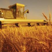 cum pot adera fermierii la fondurile mutuale