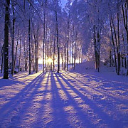 solstitiul de iarna si cea mai lunga noapte din an