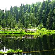 lacul negru un colt de rai in muntii vrancei