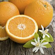 minunile din portocale