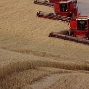 fraude cu bani pentru subventiile agricole