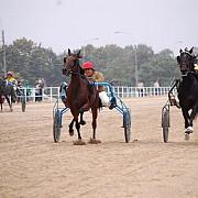 cai si avioane la hipodromul ploiesti