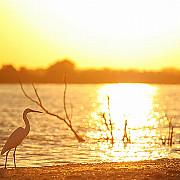 sfantu gheorghe splendoare in delta
