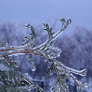 temperaturi de minus 3 grade la ploiesti dar si in tara