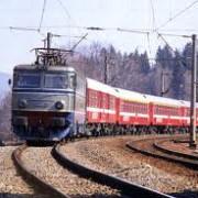 un copac a blocat circulatia trenurilor intre brasov si bucuresti