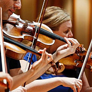 viorile stradivarius detronate de viorile moderne potrivit unui studiu facut de francezi