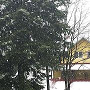 ninge la sinaia