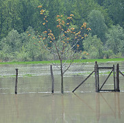 foto comuna rafov grav afectata de inundatii