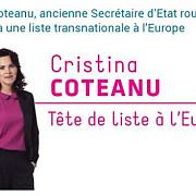 un fost secretar de stat din romania deschide lista europarlamentarelor pentru un partid din belgia