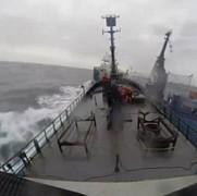 un pescador japonez s-a ciocnit violent cu un vas ecologist video
