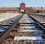 germania aresteaza trei fosti gardieni de la auschwitz