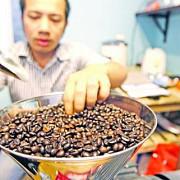 seceta din brazilia ne va scumpi cafeaua