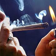in sua s-au deschis primele localuri in care se poate fuma canabis
