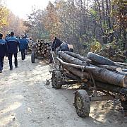 hoti de lemne prinsi si amendati de politistii prahoveni