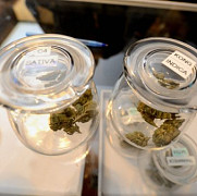 vanzari-record de marijuana