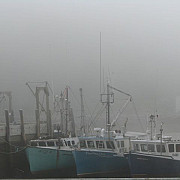 porturi inchise din cauza cetii dense