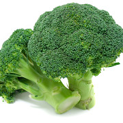 totul despre broccoli