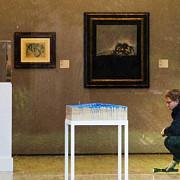 dosarul furtului de tablouri pedepse intre doi si sase ani si opt luni de inchisoare
