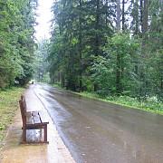 vechiul drum regal de promenada din predeal amenajat si deschis publicului
