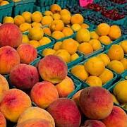 interzise de rusia fructele moldovenesti ar putea fi vandute in europa