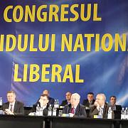 congresul pnl a inceput liberalii isi aleg conducerea