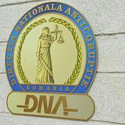 diana nemes cercetata intr-un dosar de evaziune fiscala de zeci de milioane de euro a fost extradata din sua