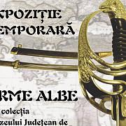 expozitia temporara de arme albe la muzeul foisorul bellu din urlati