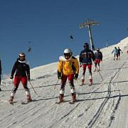 guvernul sesizeaza organele de urmarire penala pe nereguli in programul schi pentru romania