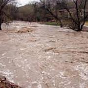 cod galben de inundatii