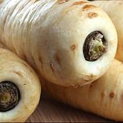 pastarnacul leguma medicament care combate o multime de boli