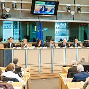 adina valean gazda saptamanii gazului in parlamentul european