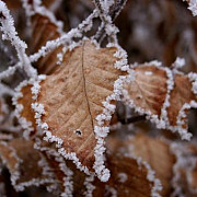 iarna isi face simtita prezenta minus 10 grade la miercurea ciuc