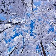 prognoza meteo pentru lunile de iarna