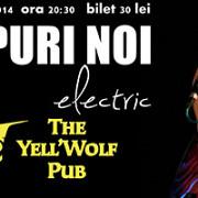 concert extraordinar al trupei timpuri noi in the yell wolf pub