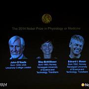 premiul nobel pentru fiziologie si medicina 2014 acordat cercetatorilor john okeefe may-britt moser si edvard moser