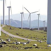 productia de energie hidroelectrica eoliana si fotovoltaica va creste semnificativ