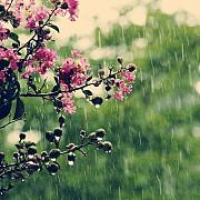 meteorologii anunta o primavara ploioasa