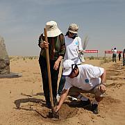 chinezii fac un parc in mijlocul desertului
