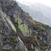 doi turisti maghiari blocati pe un versant din muntii piatra secuiului