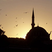 protocolul pentru terenul destinat constructiei moscheii de la bucuresti a fost semnat