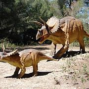 cel mai mare parc cu dinozauri din sud-estul europei va fi in romania