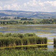o noua delta va aparea pe harta romaniei