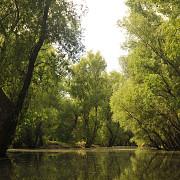 delta transformata in pasune redevine o lume a apelor