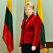 presedintele lituaniei rusia a inceput prima faza a razboiului cu vestul