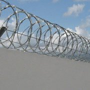 ucraina vrea sa ridice un zid la frontiera cu rusia