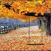 meteo cum va fi vremea pana la data de 25 octombrie