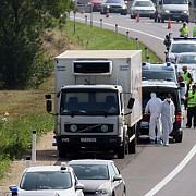 un individ cu cetatenie romana care transporta 24 de imigranti minori a fost arestat