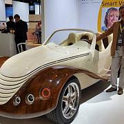 julia masina de lemn adusa de romani la frankfurt 2015