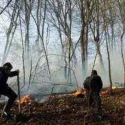 incendiu de vegetatie in harghita pompierii incearca de 17 ore sa-l stinga