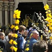 ortodocsii praznuiesc floriile cea mai importanta sarbatoare care vesteste pastele
